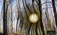 decordesign - 111.jpg - Forest sphere 1